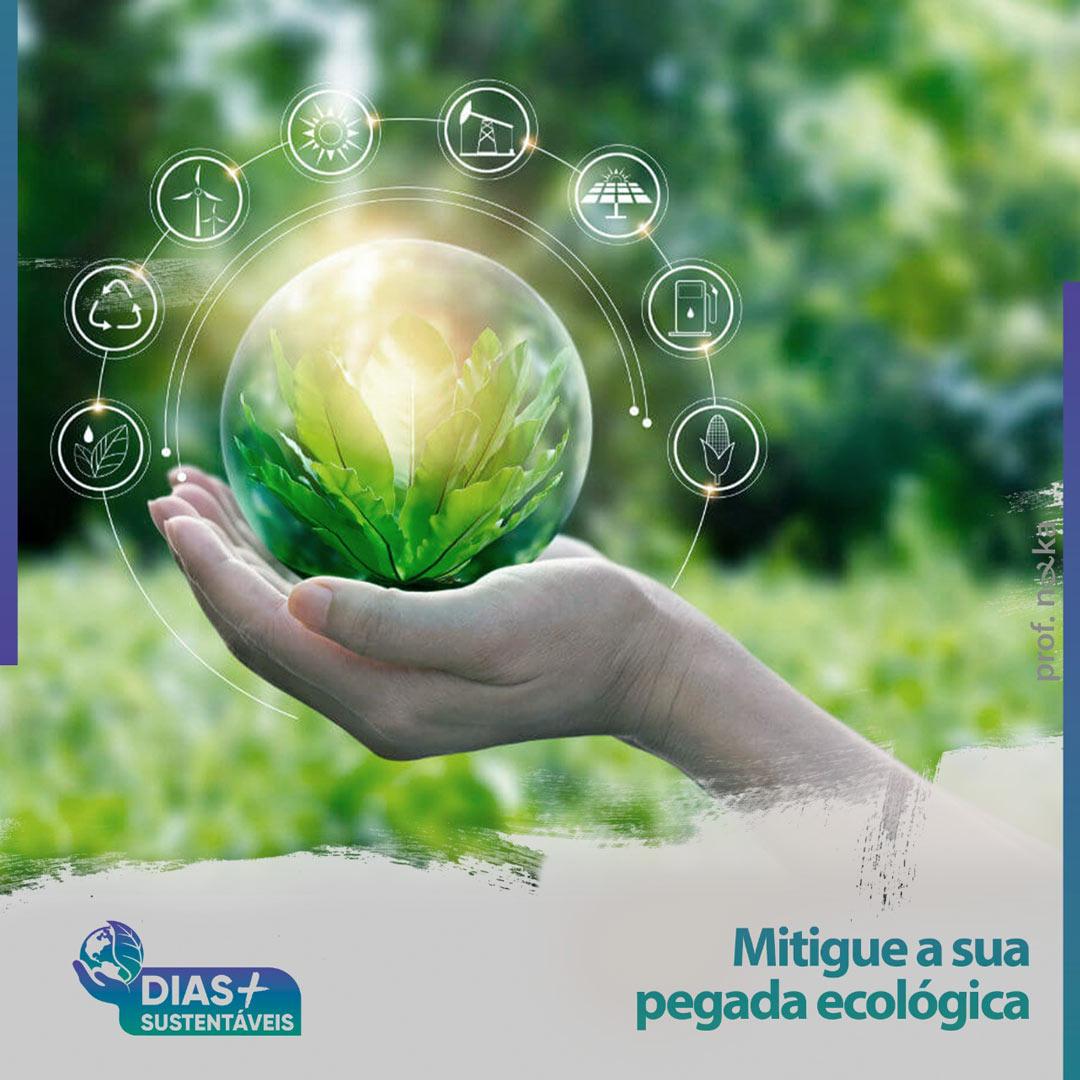 Mitigue a sua pegada ecológica