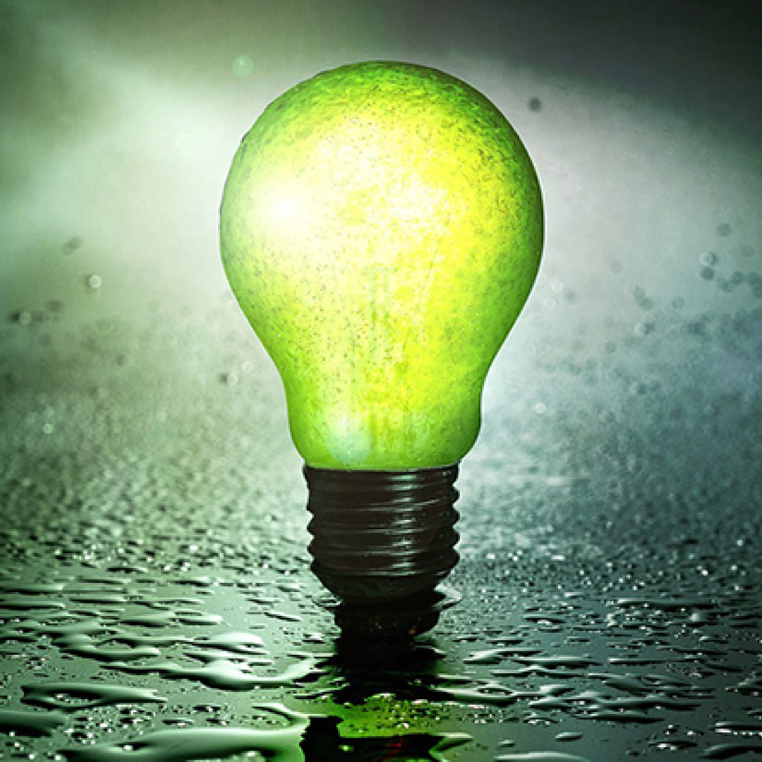 Empreendedorismo na economia verde